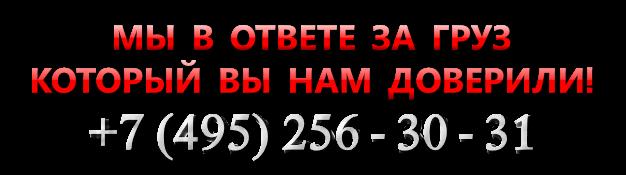 sat_ttk_sl_com_saptrans_ru_satt_4997557224_vip