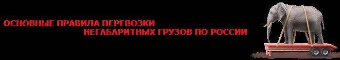 img-negabaritnui-gruz-slon-077