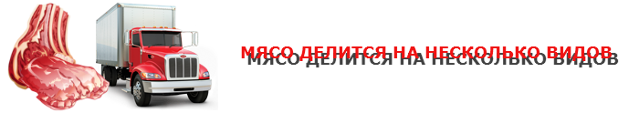 work-perevoz-77-cargo-7uy5-hgfre-free-0012