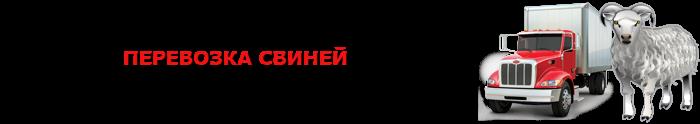 img-transportirovka-givogo-gruza-povsei-rossii-ttkslcomsaptrans-ru-com-005