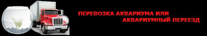 perevoz-fish-akvarium-ttk-sl-044-088-055-004