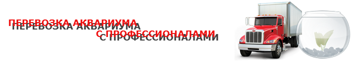 perevoz-fish-akvarium-ttk-sl-044-088-055-005