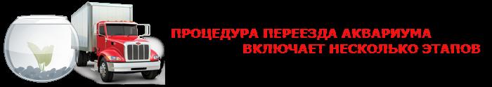 perevoz-fish-akvarium-ttk-sl-044-088-055-006