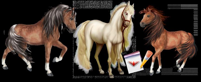 work-perevoz-88-950-perevozka-loshadei-po-russii-ttk-sl-horses-021-088-01