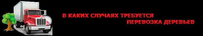 perevozka-dereviev-ttk-sl-0011