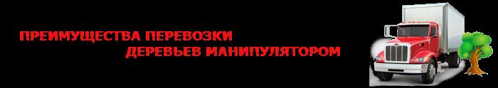 perevozka-dereviev-ttk-sl-0012