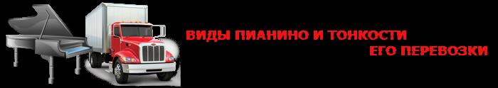 perevozka-myz-instrument-020
