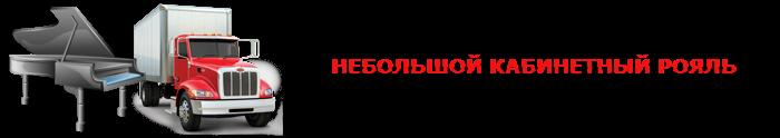 perevozka-myz-instrument-022