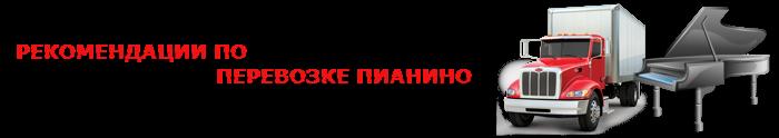 perevozka-myz-instrument-026