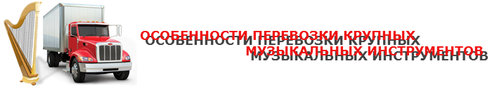 perevozka-myz-instrument-09