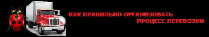 perevozka-nasekomuh-ttk-sl-004