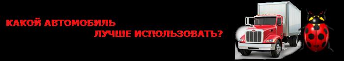 perevozka-nasekomuh-ttk-sl-005