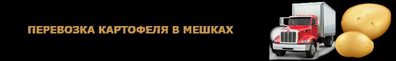 potatoes-perevozka-ttk-sl-com-kartofeli-rus-107