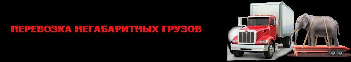 img-000-gargo-fura-ttk-sl-com-rus-gh-987-k07