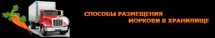 img-00-perevozka-morkovi-ttk-sl-010
