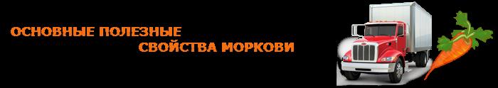 img-00-perevozka-morkovi-ttk-sl-013