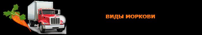 img-00-perevozka-morkovi-ttk-sl-0171