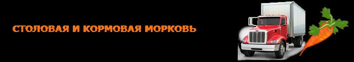img-00-perevozka-morkovi-ttk-sl-0172