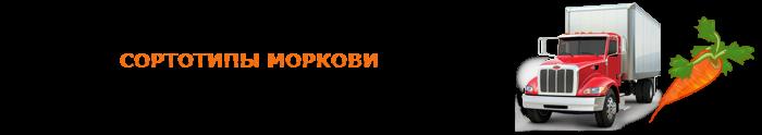img-00-perevozka-morkovi-ttk-sl-03
