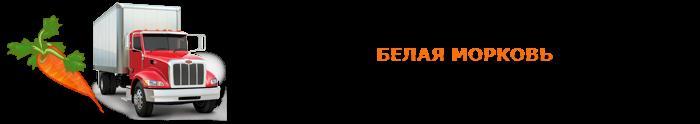 img-00-perevozka-morkovi-ttk-sl-04