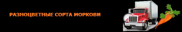 img-00-perevozka-morkovi-ttk-sl-07
