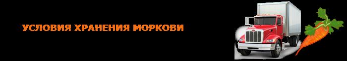 img-00-perevozka-morkovi-ttk-sl-09