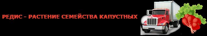 img-00-perevozka-rediski-ttk-sl-478-02