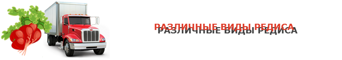 img-00-perevozka-rediski-ttk-sl-478-03