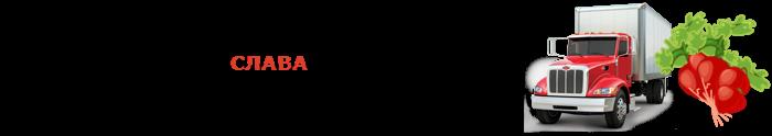 img-00-perevozka-rediski-ttk-sl-478-08