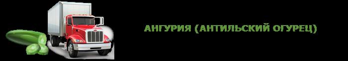 img-00-perevozka-svegih-ogurcov-ttk-sl-0011