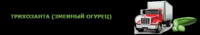img-00-perevozka-svegih-ogurcov-ttk-sl-0012