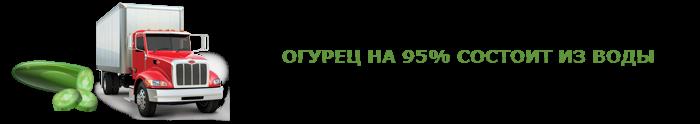 img-00-perevozka-svegih-ogurcov-ttk-sl-0015