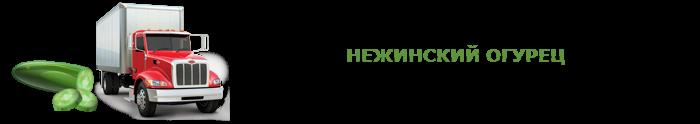 img-00-perevozka-svegih-ogurcov-ttk-sl-008