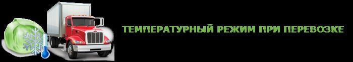 img-047-perevozka-kapustu-ttk-sl-com-kap-011