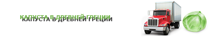 img-047-perevozka-kapustu-ttk-sl-com-kap-0116