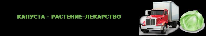 img-047-perevozka-kapustu-ttk-sl-com-kap-0118