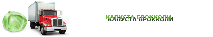 img-047-perevozka-kapustu-ttk-sl-com-kap-06