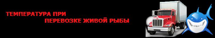 perevozka-givoi-fish-ttk-sl-com-07