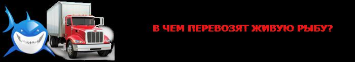 perevozka-givoi-fish-ttk-sl-com-08