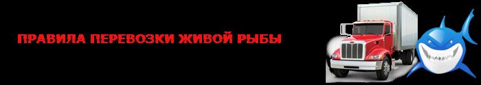 perevozka-givoi-fish-ttk-sl-com-09