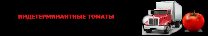 perevozka-pomidor-ttk-sl-0012