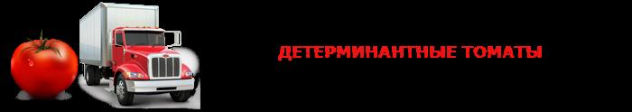 perevozka-pomidor-ttk-sl-0013