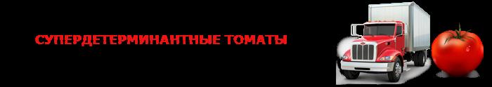 perevozka-pomidor-ttk-sl-0014