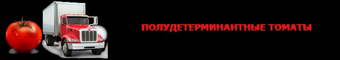 perevozka-pomidor-ttk-sl-0015