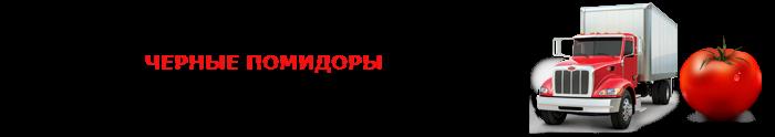 perevozka-pomidor-ttk-sl-0018