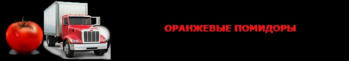 perevozka-pomidor-ttk-sl-0019