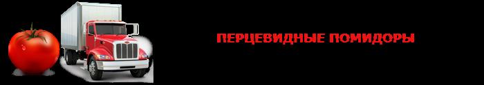 perevozka-pomidor-ttk-sl-0023
