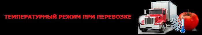 perevozka-pomidor-ttk-sl-0037