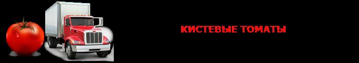 perevozka-pomidor-ttk-sl-005