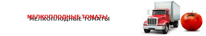 perevozka-pomidor-ttk-sl-006